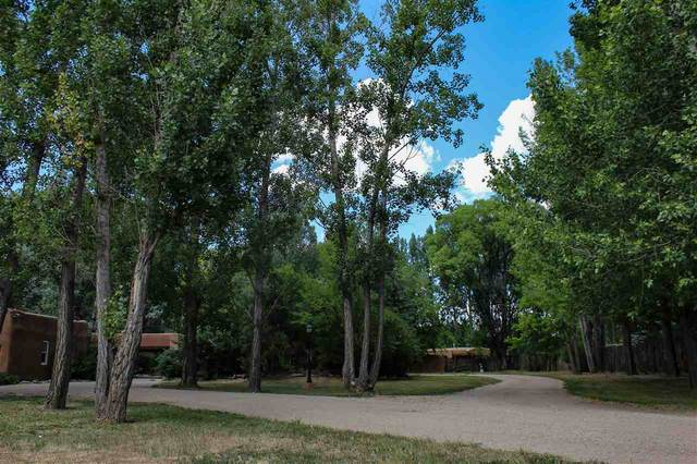 410 Cordoba Lane, Taos, NM 87571 (MLS #105353) :: Page Sullivan Group