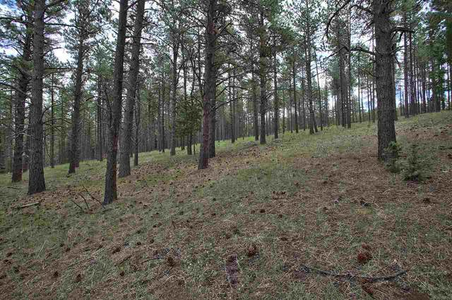 1309 San Pedro, Angel Fire, NM 87710 (MLS #105362) :: Angel Fire Real Estate & Land Co.
