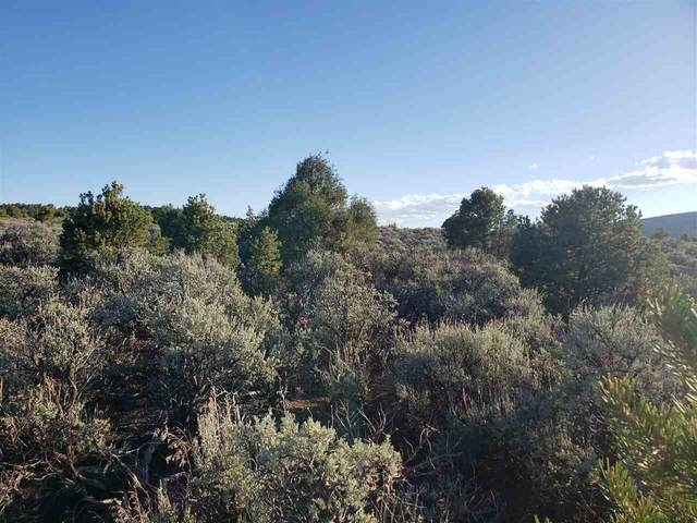 Lot 13 Eagle Ridge, El Prado, NM 87529 (MLS #105363) :: The Chisum Realty Group