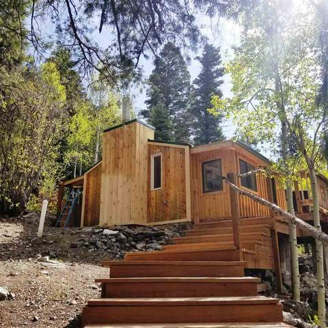 1368 Highway 150, Taos Ski Valley, NM 87525 (MLS #105368) :: Angel Fire Real Estate & Land Co.