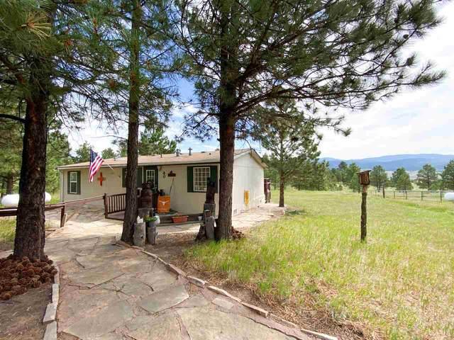 60 Laguna Road, Angel Fire, NM 87710 (MLS #105405) :: Angel Fire Real Estate & Land Co.