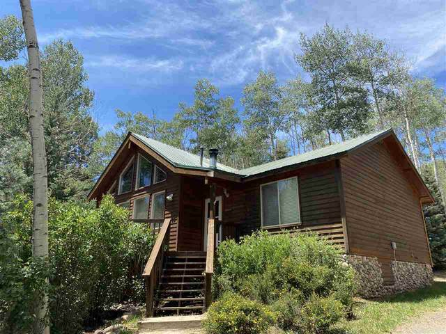 249 Via Del Rey, Angel Fire, NM 87710 (MLS #105421) :: Angel Fire Real Estate & Land Co.