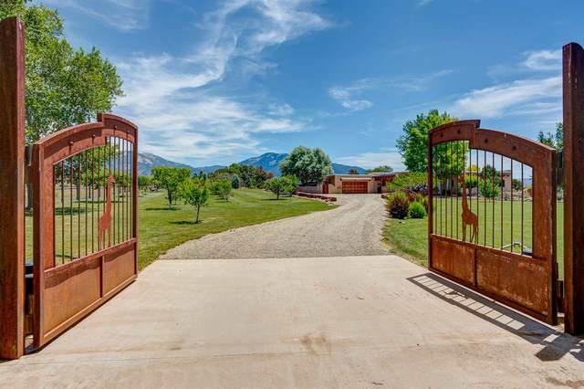 55 Vista Lejos Road, Taos, NM 87571 (MLS #105434) :: The Chisum Realty Group