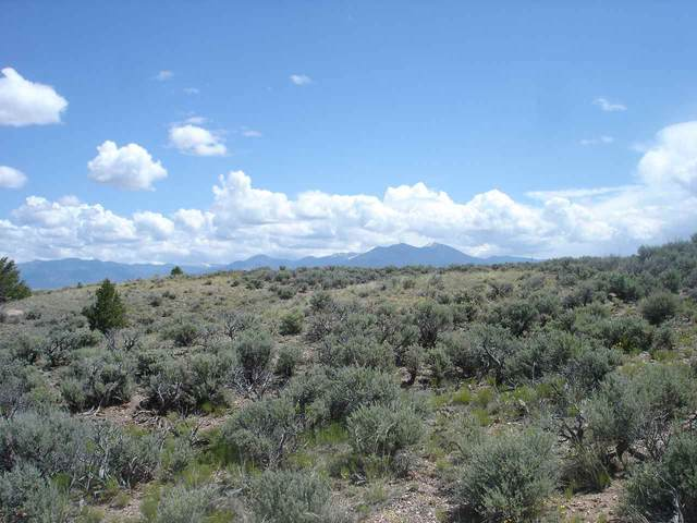 Adj County Road 110, Taos, NM 87571 (MLS #105436) :: Page Sullivan Group