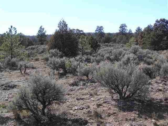 West side HWY 2 Highland Estates Subd, Tres Piedras, NM 87577 (MLS #105441) :: Page Sullivan Group