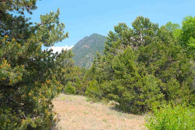 12 Acres off of Canada Del Agua, Valdez, NM 87580 (MLS #105444) :: Page Sullivan Group
