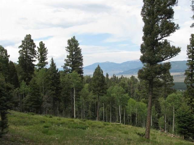 tbd Zia, Angel Fire, NM 87710 (MLS #105454) :: Angel Fire Real Estate & Land Co.