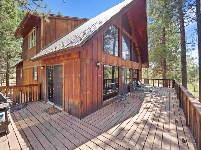 38 Saints Terrace, Angel Fire, NM 87710 (MLS #105457) :: The Chisum Realty Group