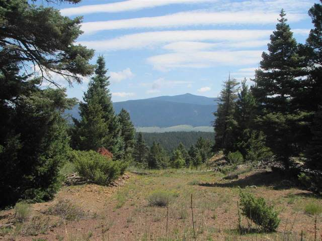 Lot 51 AB Taos Pines Ranch Road, Angel Fire, NM 87710 (MLS #105474) :: The Chisum Realty Group