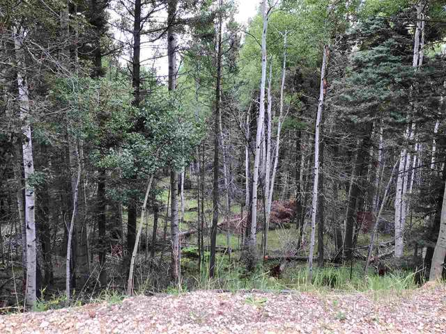 Lot 1169 Buena Vista Dr, Angel Fire, NM 87710 (MLS #105479) :: The Chisum Realty Group