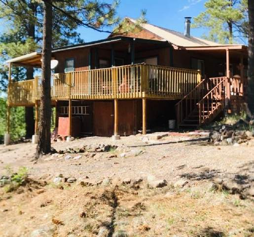 12 Oak Rd, Guadalupita, NM 87722 (MLS #105485) :: Page Sullivan Group