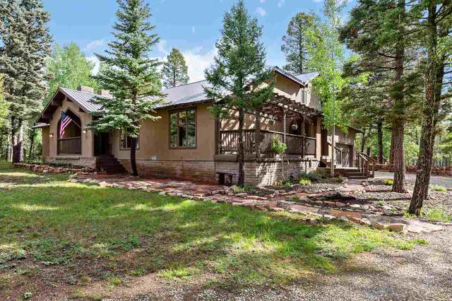 51 Alpine Lake Way, Angel Fire, NM 87710 (MLS #105504) :: Page Sullivan Group