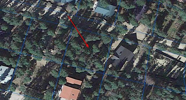 Lot 44 Viva Dell Trail, Red River, NM 87558 (MLS #105516) :: Angel Fire Real Estate & Land Co.