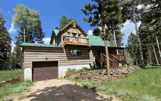 83 Cheerful Way, Angel Fire, NM 87710 (MLS #105519) :: Angel Fire Real Estate & Land Co.
