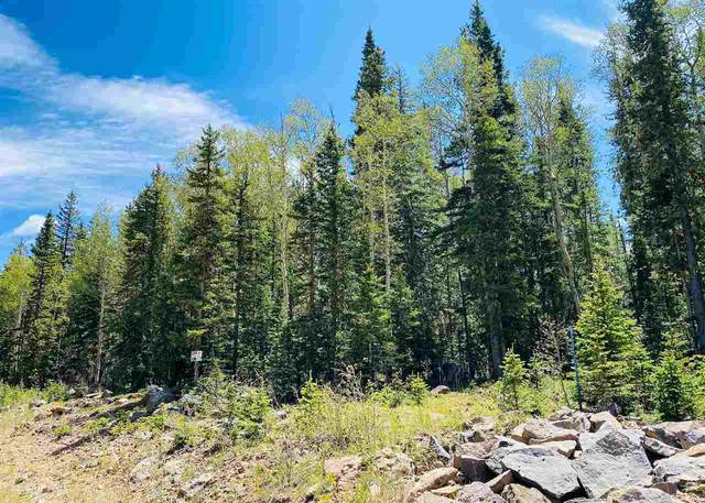 Lot 47 Happy Way, Angel Fire, NM 87710 (MLS #105544) :: Angel Fire Real Estate & Land Co.