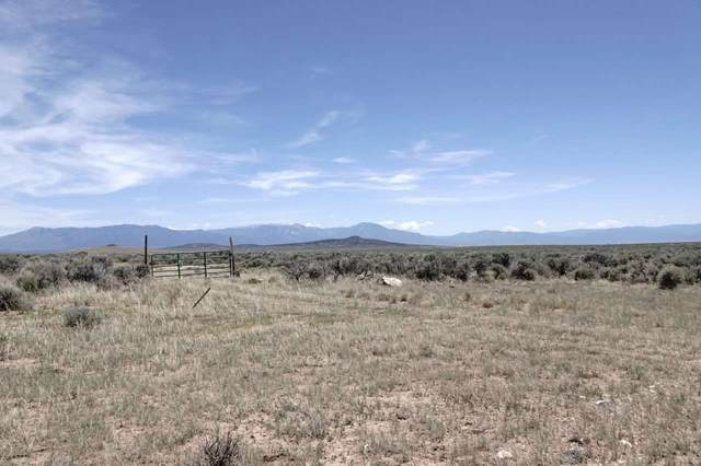 55 N Chili Line Lot 16, Tres Piedras, NM 87577 (MLS #105554) :: The Chisum Realty Group