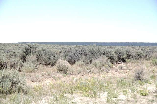 lot 24 Off Auaje Servilletta, Tres Piedras, NM 87577 (MLS #105555) :: The Chisum Realty Group