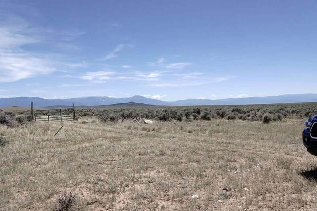 lot 20 N Chili Line Servilleta, Tres Piedras, NM 87577 (MLS #105556) :: The Chisum Realty Group