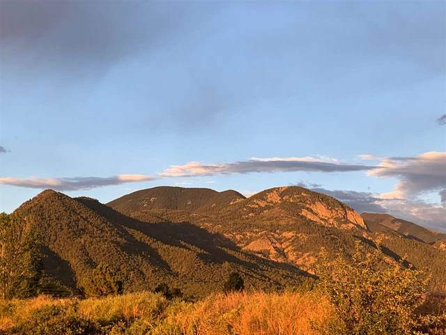 Parcel 2 Off Rim Road, Arroyo Seco, NM 87514 (MLS #105560) :: The Chisum Realty Group