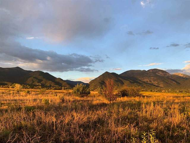 Parcel 3 Off Rim Road, Arroyo Seco, NM 87514 (MLS #105561) :: The Chisum Realty Group