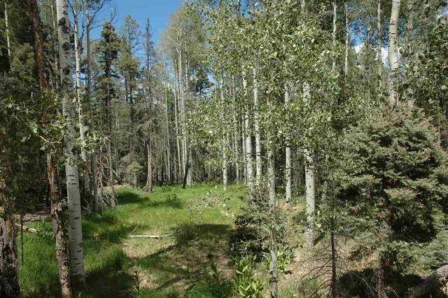 lot 1433 Calle De Los Cablleros, Angel Fire, NM 87710 (MLS #105564) :: Page Sullivan Group