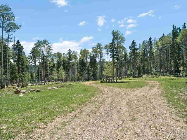 6 and 7 Lake Court Hidden Lake, Angel Fire, NM 87710 (MLS #105573) :: Chisum Realty Group