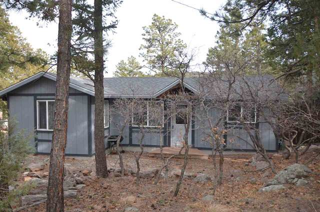 43 Jaybird Lane, Ute Park, NM 87749 (MLS #105583) :: The Chisum Realty Group