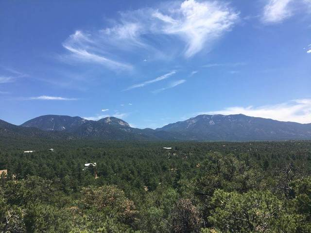 Deer Mesa Rd, Arroyo Seco, NM 87514 (MLS #105592) :: The Chisum Realty Group