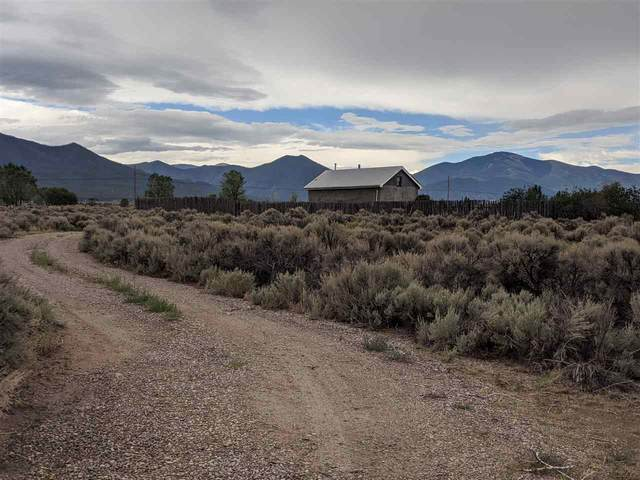 150 Buena Vista Rd, Cerro, NM 87519 (MLS #105595) :: Angel Fire Real Estate & Land Co.
