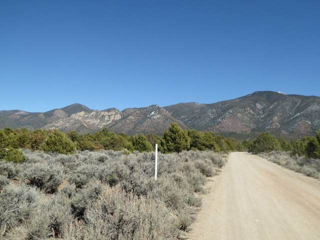 Tract A2 A3 No Name Street, El Rito, NM 87530 (MLS #105599) :: Angel Fire Real Estate & Land Co.