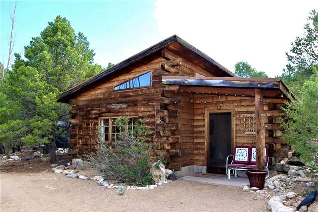 8 Honey Farm Road, Questa, NM 87556 (MLS #105658) :: The Chisum Realty Group