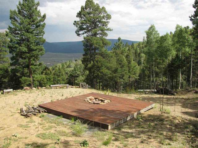 lot 59 Palo Flechado Ridge Rd, Angel Fire, NM 87710 (MLS #105661) :: The Chisum Realty Group