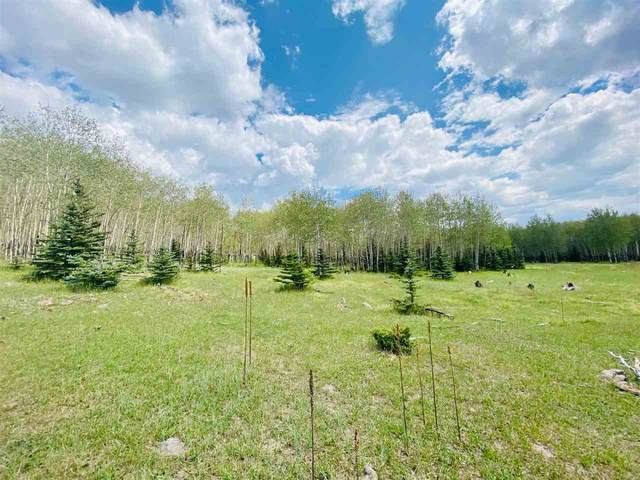 Lot 185 Spotted Owl, Angel Fire, NM 87710 (MLS #105663) :: Page Sullivan Group