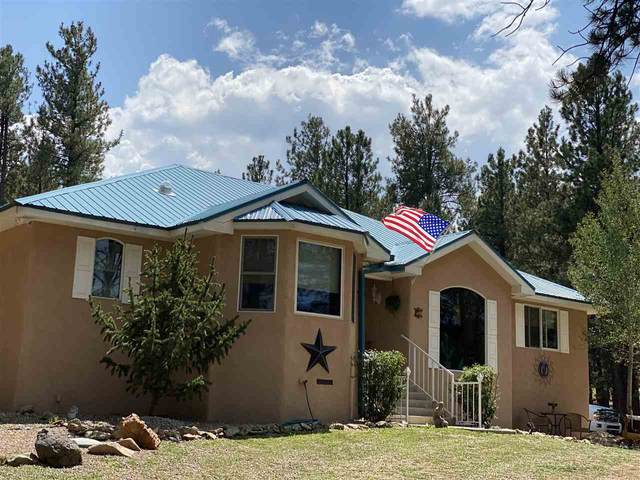 61 Sarazen Terrace, Angel Fire, NM 87710 (MLS #105664) :: The Chisum Realty Group