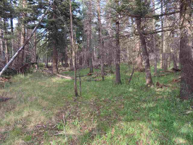Lot 1468 Cheerful Way, Angel Fire, NM 87710 (MLS #105671) :: The Chisum Realty Group