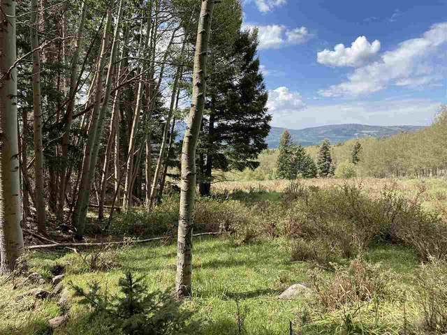 Lot 1564A Cascade Overlook, Angel Fire, NM 87710 (MLS #105674) :: The Chisum Realty Group