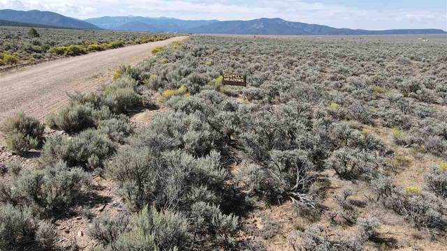 Unit 4 Lot 19 Costilla Meadows Sdsangre De Cristo And Ventero Rd, Costilla, NM 87524 (MLS #105680) :: The Chisum Realty Group