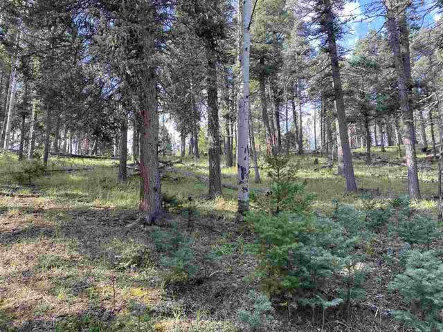 San Andres Cir, Angel Fire, NM 87710 (MLS #105687) :: The Chisum Realty Group