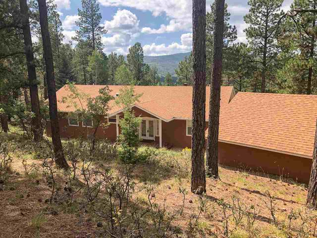 114 El Camino Real, Angel Fire, NM 87710 (MLS #105688) :: The Chisum Realty Group