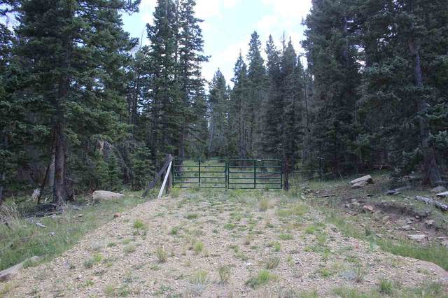 lot 19 Hinz Dr, Angel Fire, NM 87710 (MLS #105694) :: Chisum Realty Group