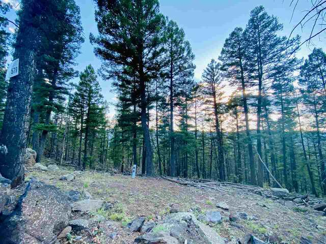 Lot 579 Panorama Way, Angel Fire, NM 87710 (MLS #105699) :: The Chisum Realty Group