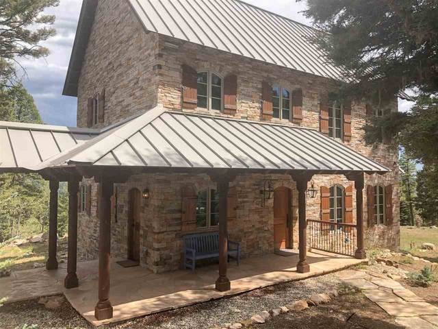 186 Brazos Dr, Angel Fire, NM 87710 (MLS #105708) :: Page Sullivan Group