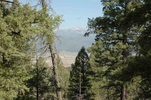 125 Valley Road, Angel Fire, NM 87710 (MLS #105724) :: Angel Fire Real Estate & Land Co.
