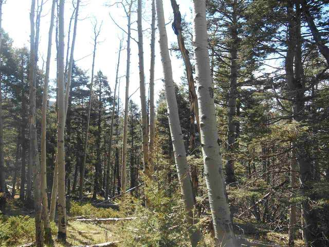 1306A Pleasant Valley Overlook, Angel Fire, NM 87710 (MLS #105742) :: The Chisum Realty Group
