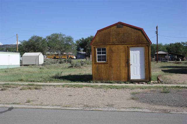 shed on E 9th Street, Cimarron, NM 87714 (MLS #105752) :: Page Sullivan Group