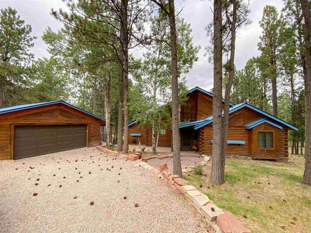 63 Halo Pines Terrace, Angel Fire, NM 87710 (MLS #105754) :: Page Sullivan Group