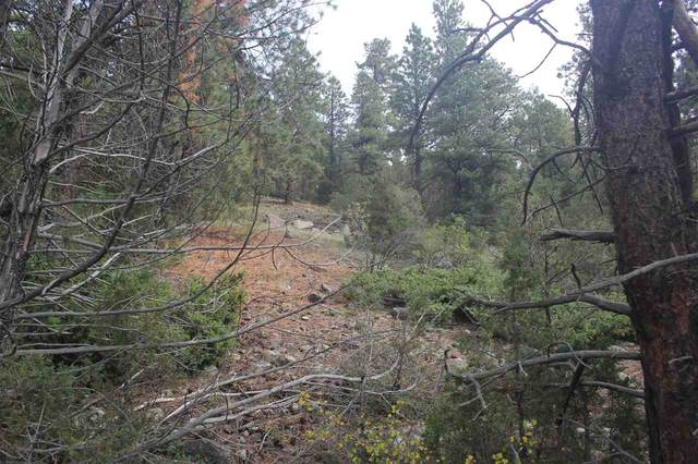 tracts B Highway 64, Taos, NM 87571 (MLS #105755) :: Berkshire Hathaway Home Services