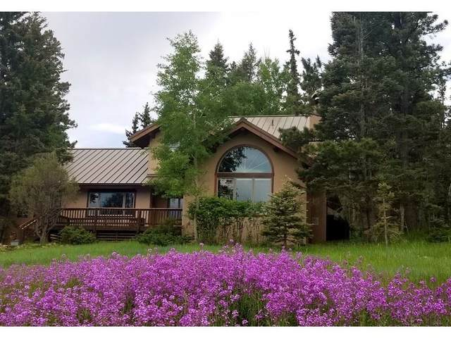 90 Lakeview Park Drive, Angel Fire, NM 87710 (MLS #105776) :: Page Sullivan Group