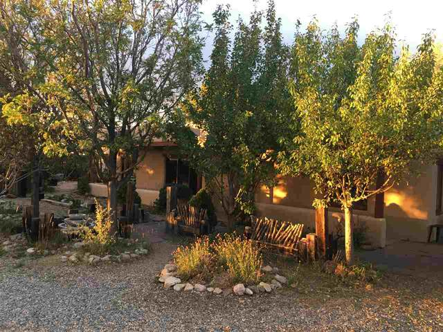 1503 Whitewater Road, El Prado, NM 87529 (MLS #105785) :: Page Sullivan Group