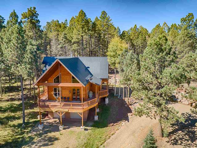 88 Back Basin, Angel Fire, NM 87710 (MLS #105790) :: Page Sullivan Group